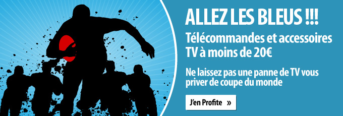 Coupe-du-Monde-de-Rugby-blog